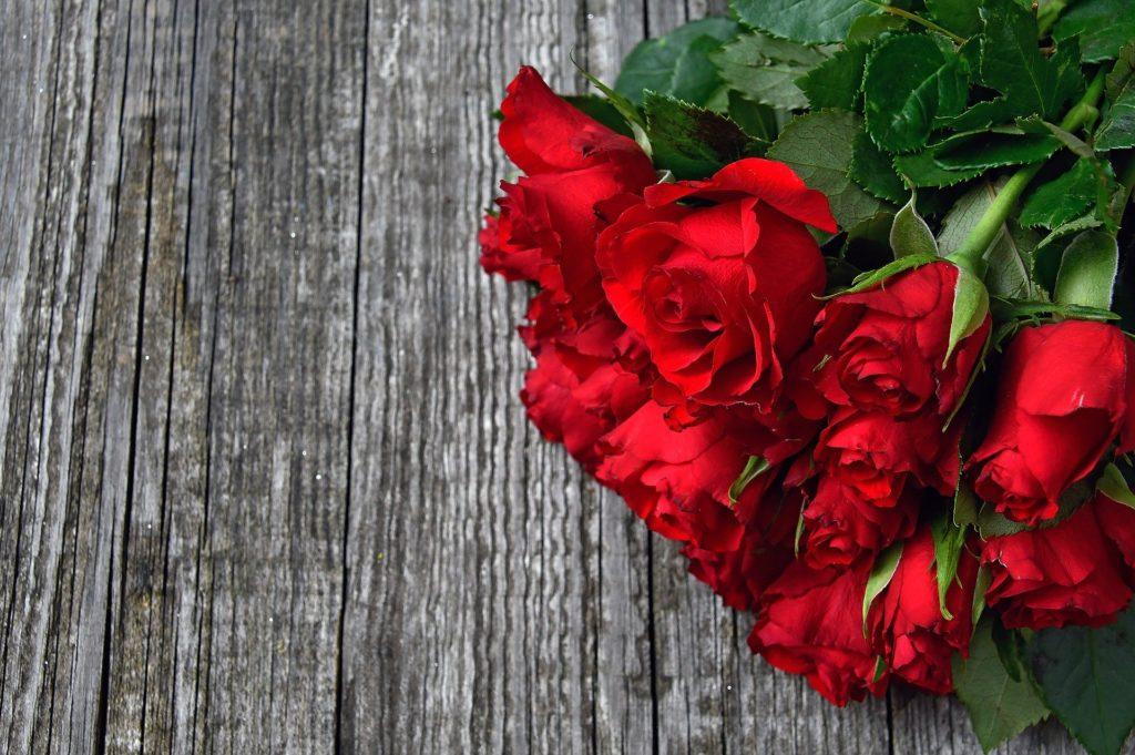red-rose-3923287_1920